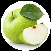 リンゴ果実 培養細胞エキス